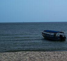 Moored Boat by smulder