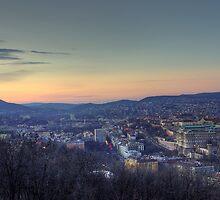 Buda Hills by Béla Török