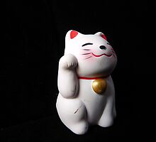 Lucky Cat by Diana Forgione