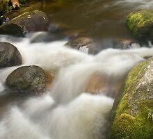 Tooronga Falls - Victoria Australia by Mark Teague