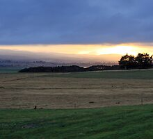 Sunrise - Tamar Valley, Tasmania by Ruth Durose