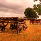 Old carts at Kaiwarra, Kangaroo Island by Elana Bailey