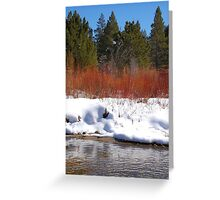Brilliant Willow Greeting Card
