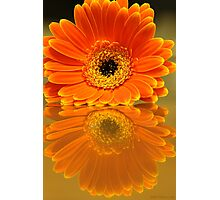 Double Orange Photographic Print