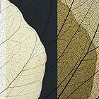 The leaf:composition1 by dominiquelandau