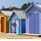 Bathing Boxes by Susie Raine