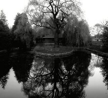 Reflecting Willow Black&White by TLWhite