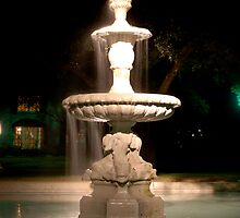 The Fountain by Brian Humek