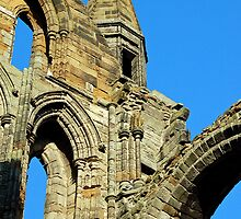 Whitby Abbey. by daimonic