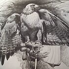 Red Tailed Hawk by coolart