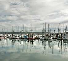 Fishing Boats by Randall Scholten