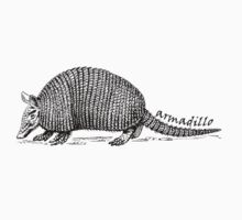 Armadillo  by Cathie Tranent