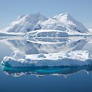 Ice reflections by David Burren