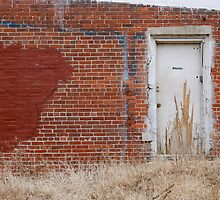 Overgrown Back Door by Robert Baker