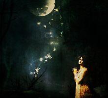Moonlit Night by Pamela Bates
