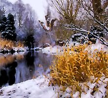Batford Springs in Winter by Roantrum