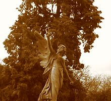 Angel Grave in Sepia by karenuk1969