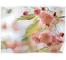Pink and Green Pastel Flowering Tree Branch Poster