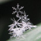 SNOWFLAKE PILE by gothgirl