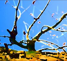 Branch Out by Orla Cahill