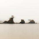 Tiny Island by Jenny Ryan