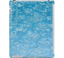 Winter frosted glass 2 iPad Case/Skin