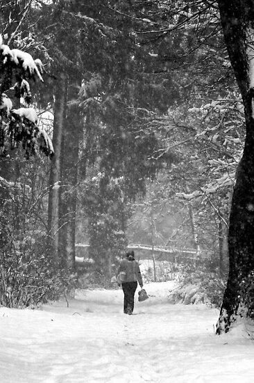 Unknown Pathway by danielhardinge