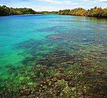 Indonesian Water by Rikki Frederiksen