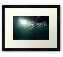 Seadragons & Sunshine Framed Print