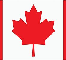 Canadian Flag by retromoomin