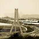 Cable bridge by Janine Branigan