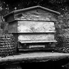 Beehive by Gordon Brebner