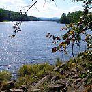 Madawaska River by George Cousins