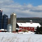 Boyden Farms by Tammy F