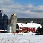 Boyden Farms by Tammy F