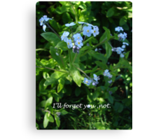 I'll Forget You Not Canvas Print