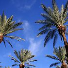 Palm Trees Blue Sky by Jo Nijenhuis