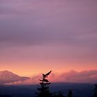 Mt Adams - Firelight by Bill Lane