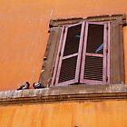 Love birds  by LittleBird