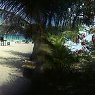 beach view by jiorji