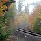 Railroad tracks in an Autumn mist by scenebyawoman