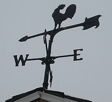 Americana Series:  Awesome Weathervanes Rooster by Rebecca Bryson