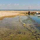 Tide's Out at Fouras by Elaine Teague
