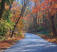 Kentucky Country Road by kentuckyblueman