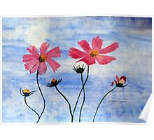 Cosmos flowers in my country Poster