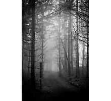Les Étangs Fantomatiques XXXI Photographic Print