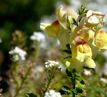 Golden Floweret by Loriene Perera