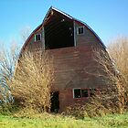 Abandon Barn  by kodakcameragirl