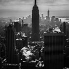 THE EMPIRE STATE BUILDING by Michael Carter