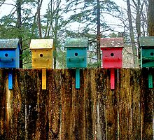 A Rainbow of Birdhouses by Wayne King